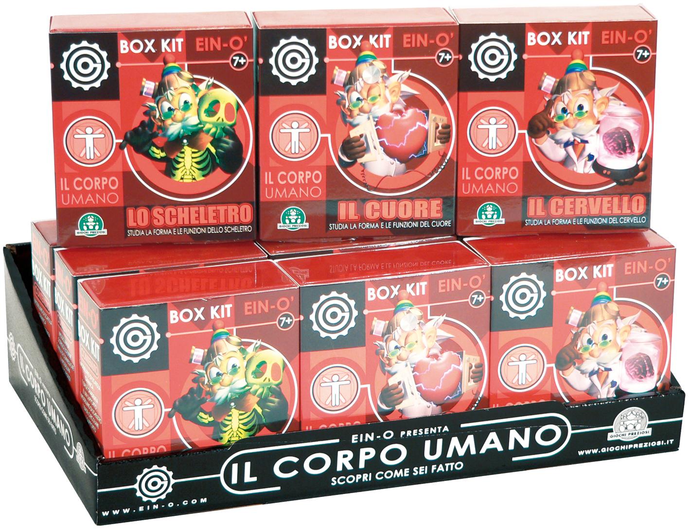 CORPO UMANO BOX KITS
